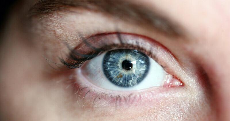 Blickpunkt Auge – Rat und Hilfe bei Sehverlust
